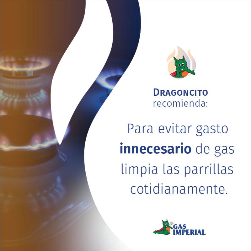 tips-dragoncito-recomienda